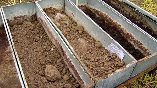Pesquisadores estudam reaproveitamento do lodo de esgoto