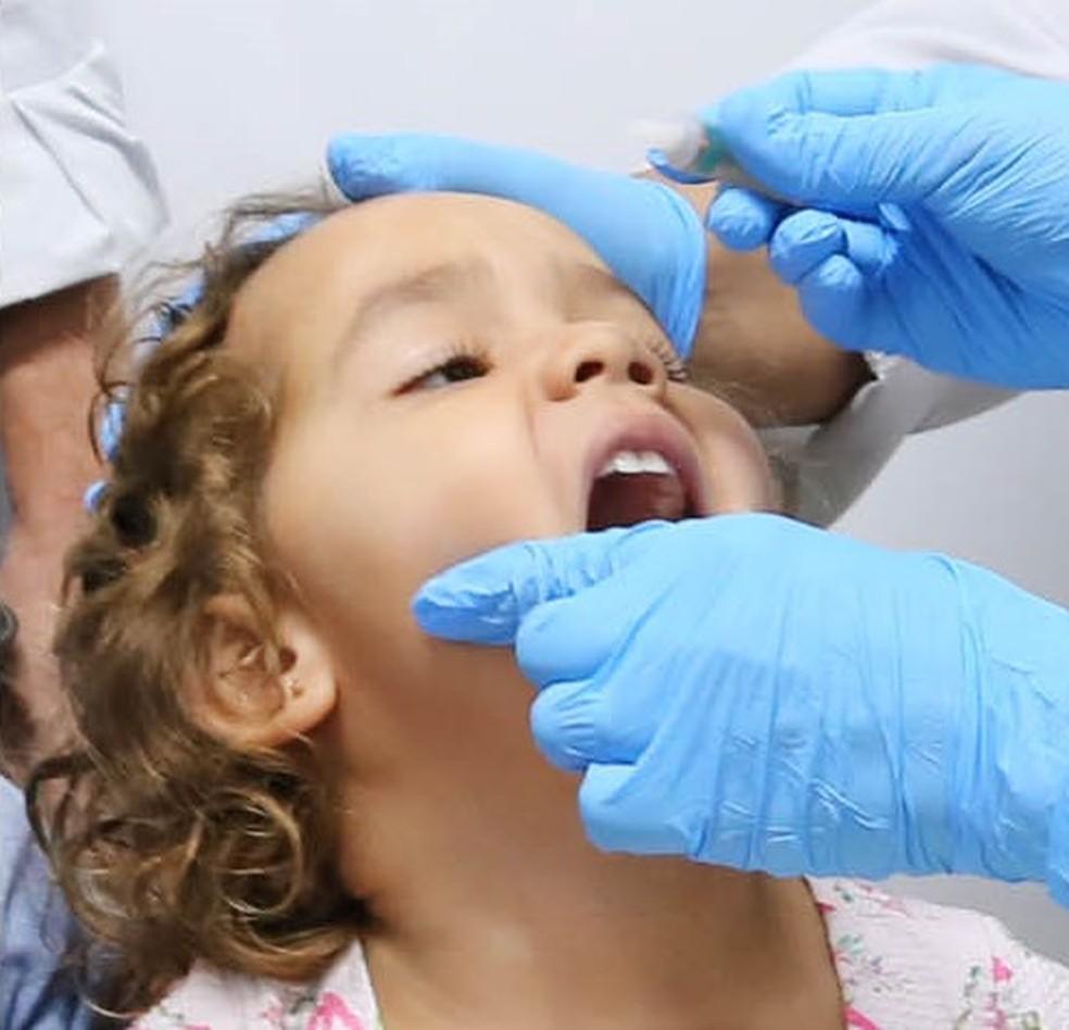 Para cumprir a meta, o Ceará precisa aplicar 509.183 doses de vacina. (Foto: Divulgação)