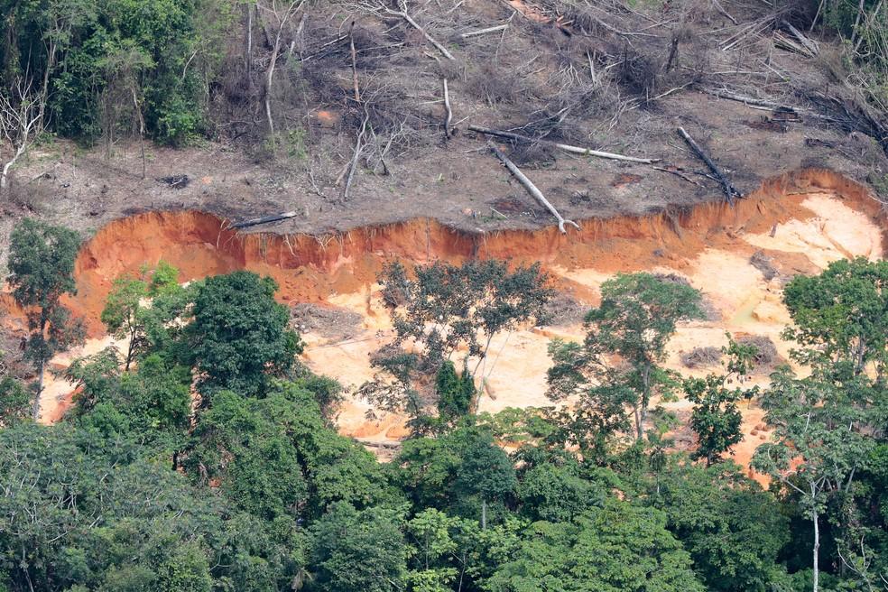 Na mineração do ouro, o garimpo usa mercúrio, substância que acaba gerando graves danos ambientais — Foto: Chico Batata/Greenpeace