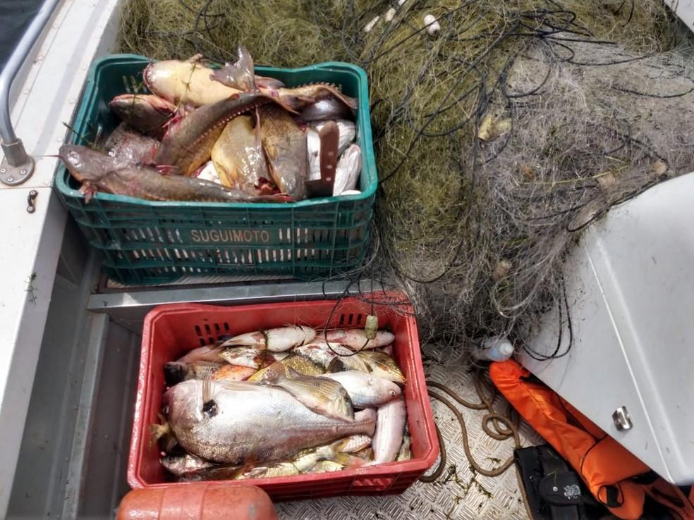 Peixes e acessórios usados na pescar irregular foram apreendidos — Foto: Polícia Militar Ambiental