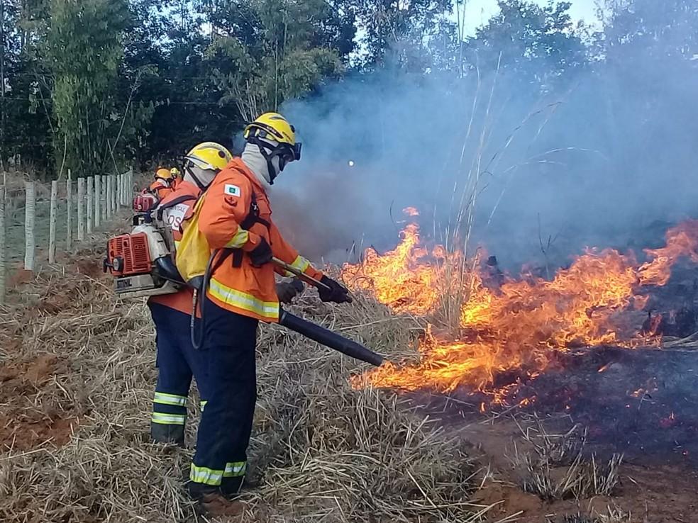 Bombeiros atuam em incêndio na Rota do Cavalo em Sobradinho — Foto: Divulgação