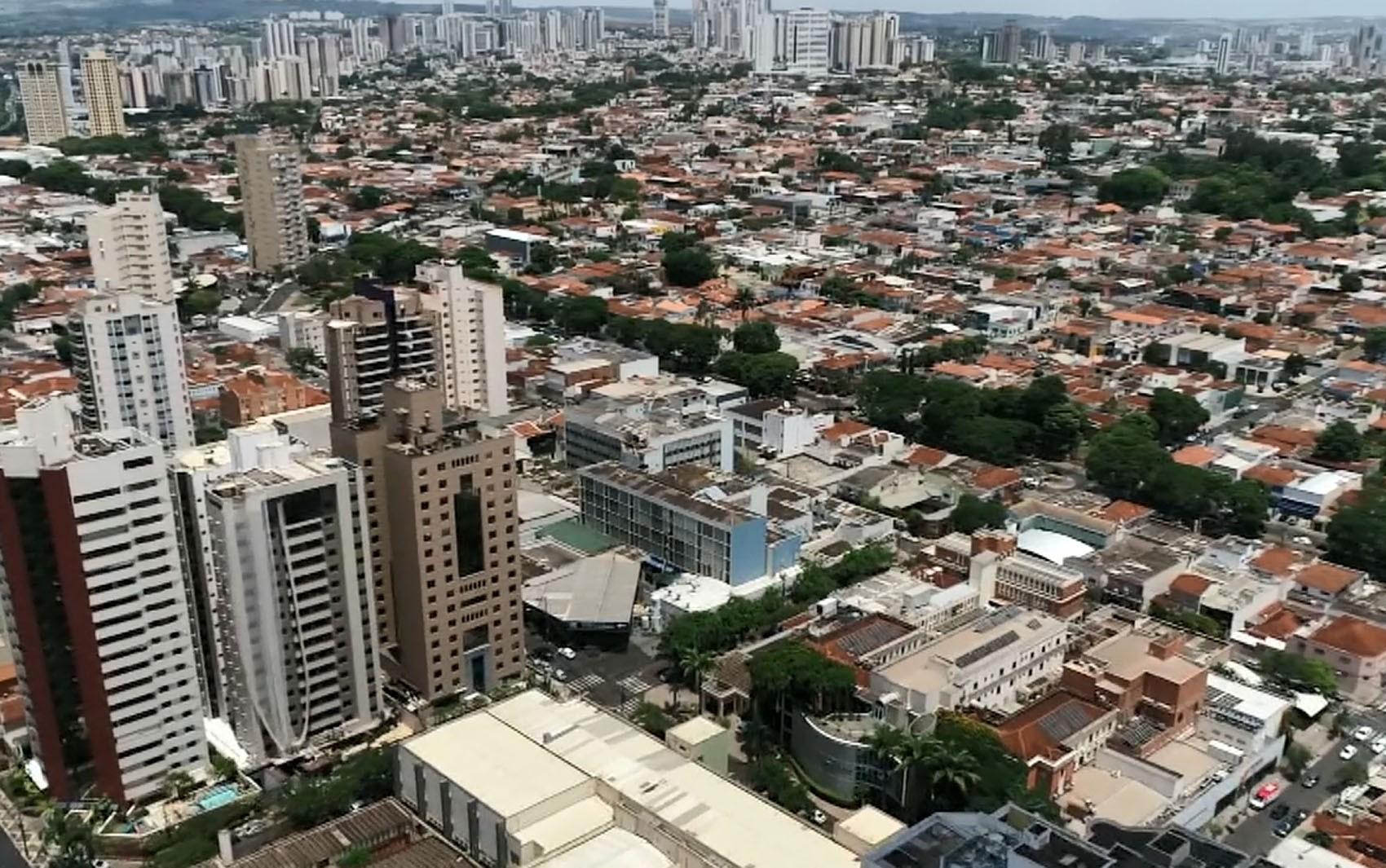 Campinas e Ribeirão Preto têm área verde abaixo da média de SP; veja benefícios das árvores ponto a ponto