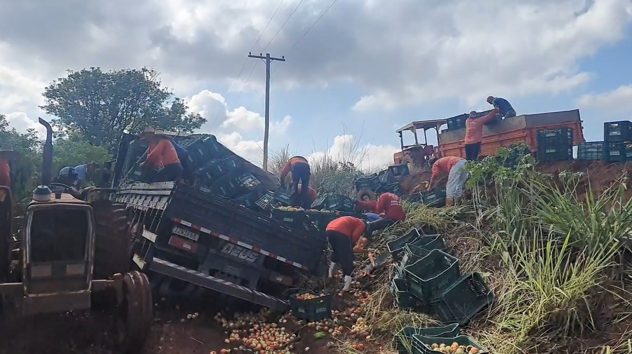 Caminhão carregado com tomates tomba em estrada rural de Sumaré