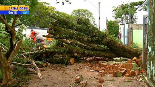 Moradores relatam momentos de medo e tensão durante temporal e ventania no Rio Grande do Sul