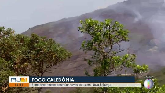 Combate a queimada no 2º pico mais alto do Estado do RJ já dura mais de 20 horas