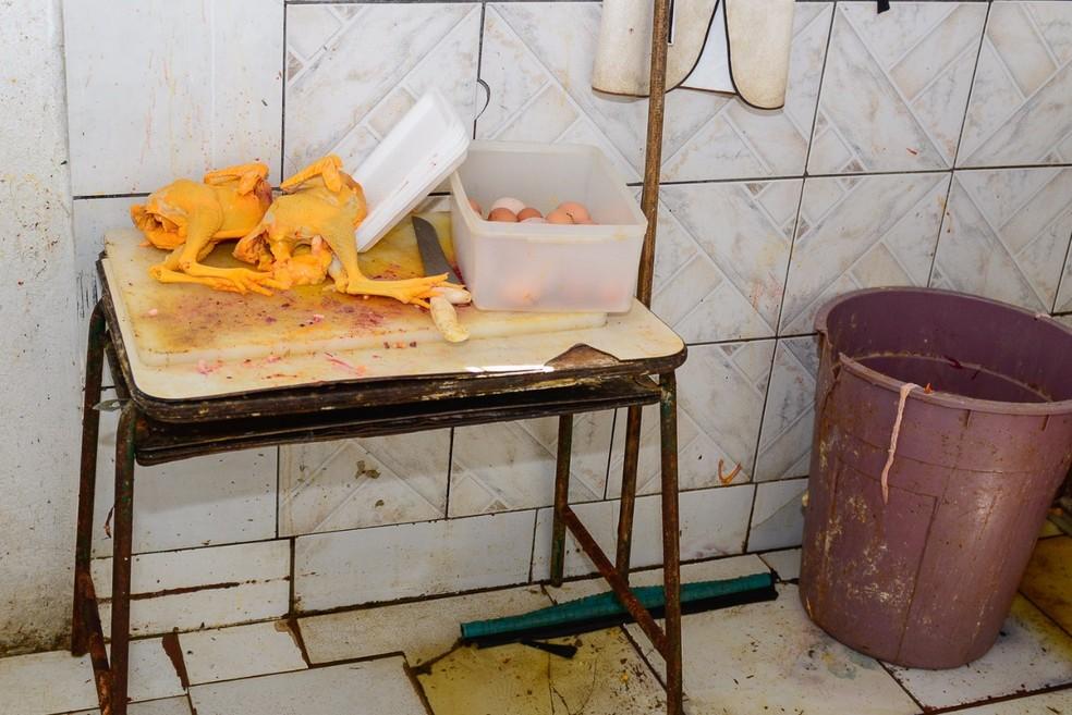 Frangos eram abatidos, depenados e pintados artificialmente (Foto: Eduardo Andrade/Divulgação/Vigilância Sanitária de Boa Vista)