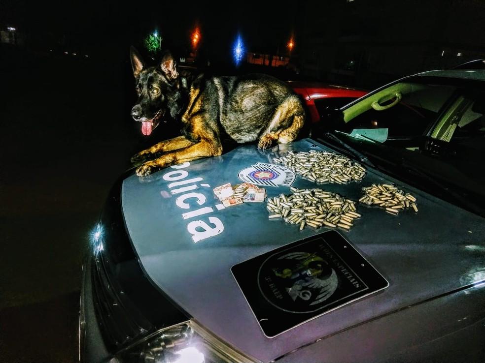 Cão farejador da PM encontra mais de meio quilo de cocaína em São José — Foto: Divulgação/ Polícia Militar