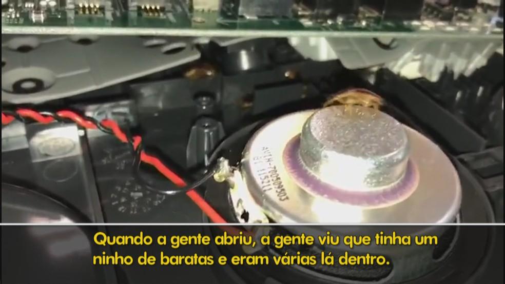Baratas dentro de telefone no Ministério do Desenvolvimento Regional, em Brasília — Foto: TV Globo/Reprodução