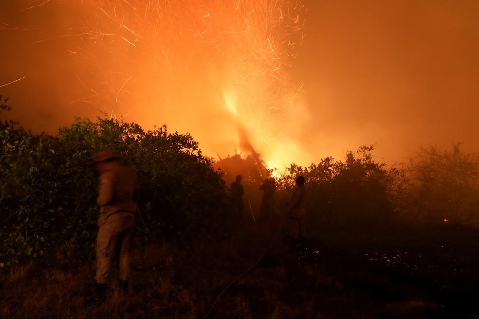Bombeiros tentam apagar incêndio no Pantanal, em Poconé, Mato Grosso, no dia 26 de agosto. — Foto: Amanda Perobelli/Reuters