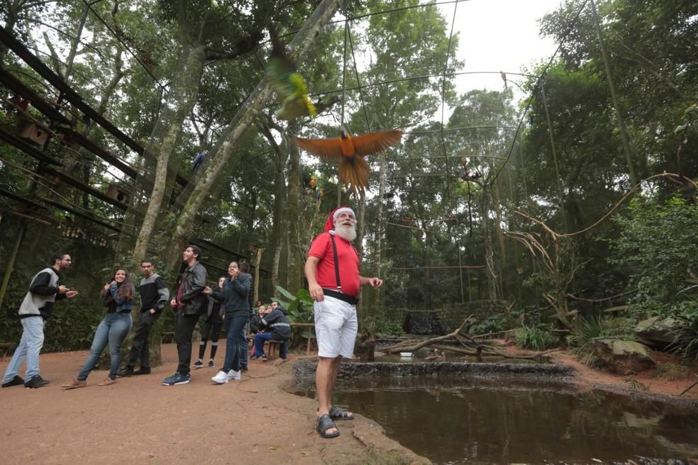 Papai Noel visitará vários pontos turísticos, como o Parque das Aves, em Foz do Iguaçu — Foto: Nereu AmbroziniPMFI