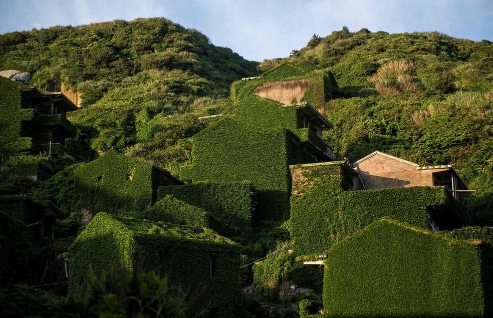 Paredes e telhados vão sendo tomados pela vegetação (Foto: AFP)
