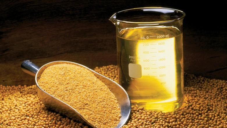 derivados-soja-graos-farelo-oleo (Foto: United Soybean Board/CCommons)