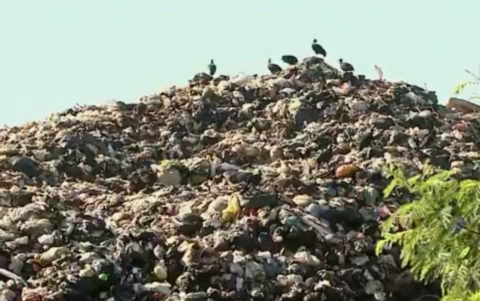 Em janeiro de 2016, moradores do Pau Queimado reclamaram de acúmulo de lixo em área de transbordo provisório (Foto: Edvaldo Souza/ EPTV)