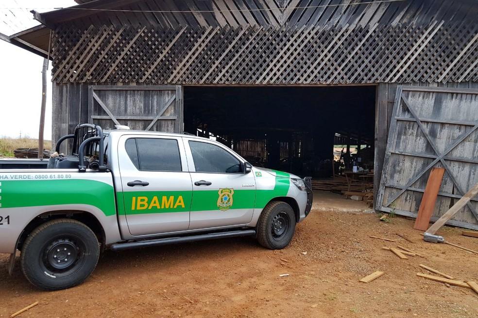 Ibama autua 600 madeireiras por fraude em pagamento de taxas em Mato Grosso (Foto: Ibama)