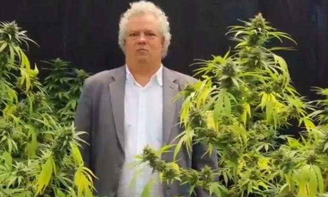 Candidato do PSol notificado por vídeo rodeado por plantas