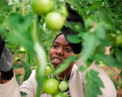 Tereza Cristina diz não ser favorável a cotas, mas defende incentivo a mulheres do campo