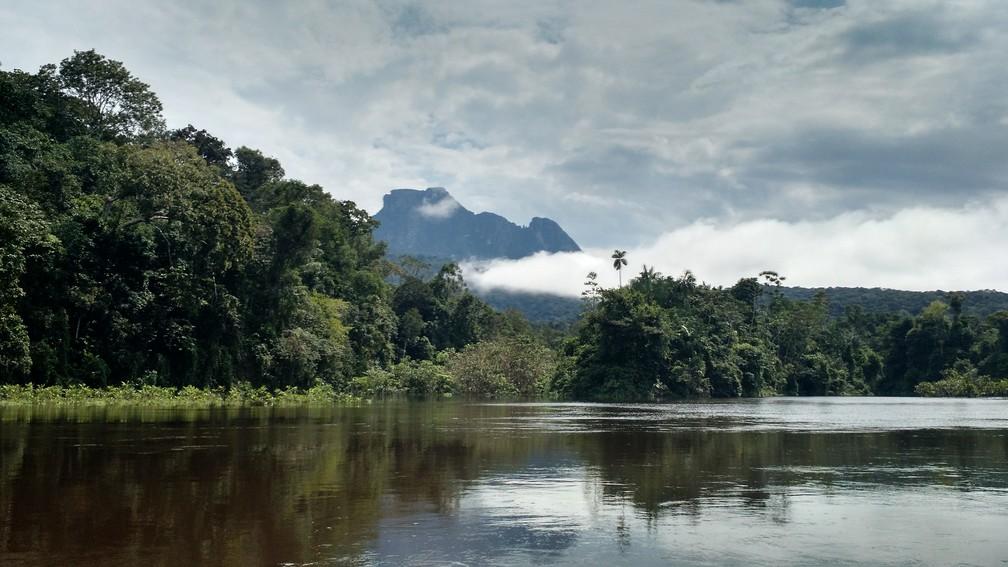 Igreja Matriz Nossa Senhora de Lourdes irá servir de refúgio e encontro da comunidade indígena Yanomami, que vive na região de Maturacá (AM) — Foto: Divulgação/Creatos Arquitetura