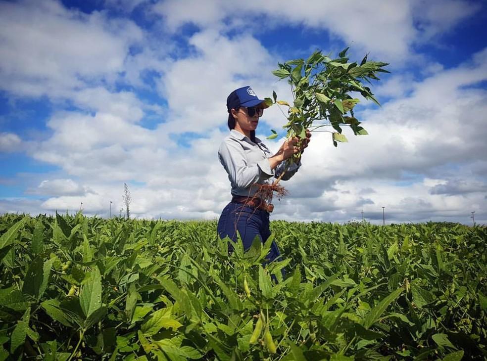 Julia Barbosa era engenheira agrônoma — Foto: Instagram/Reprodução