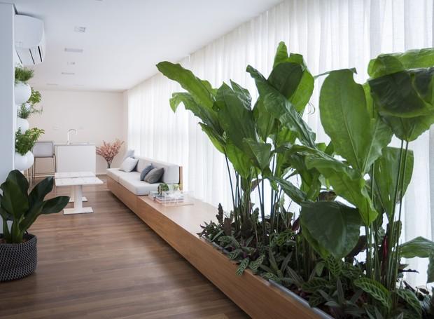 O cantinho verde tem jardim vertical de temperos e a floreira instalada no banco de madeira acompanhando o traçado curvo do ambiente (Foto: Marcelo Ribeiro/Divulgação)