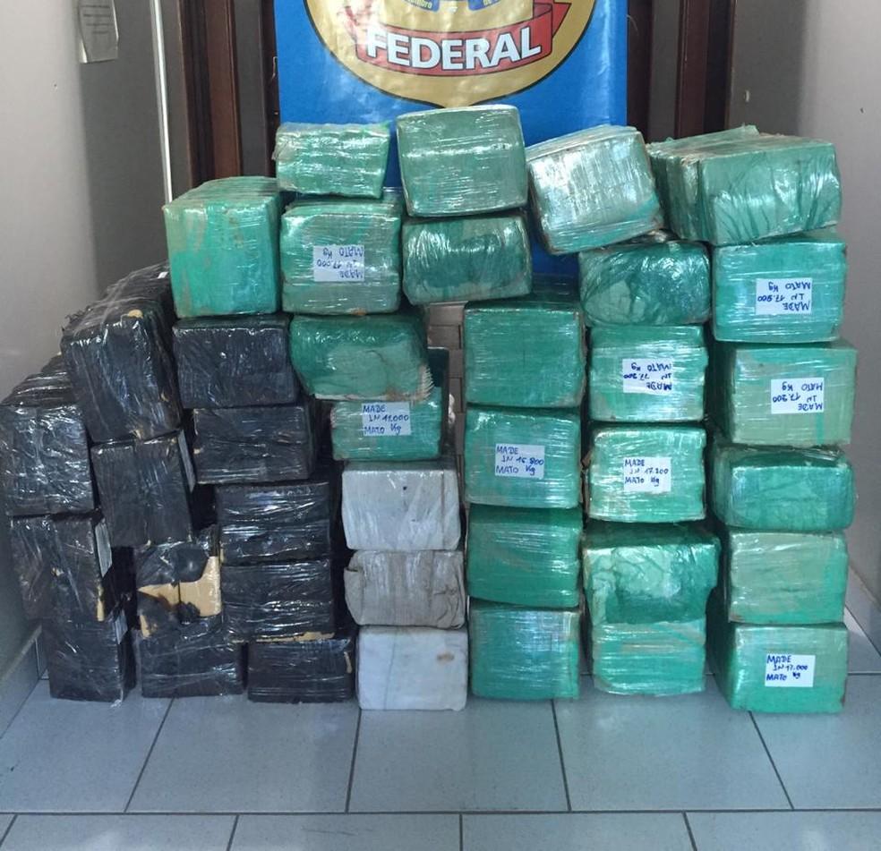 PF apreendeu 775 kg de maconha escondidos em cabine de carreta em Sinop — Foto: Polícia Federal de Mato Grosso/Assessoria