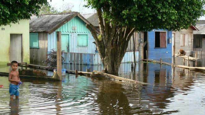 No início do século 20, cheias extremas do Amazonas ocorriam a cada 20 anos; hoje, acontecem a cada quatro (Foto: JOCHEN SCHONGART/INPA/BBC)