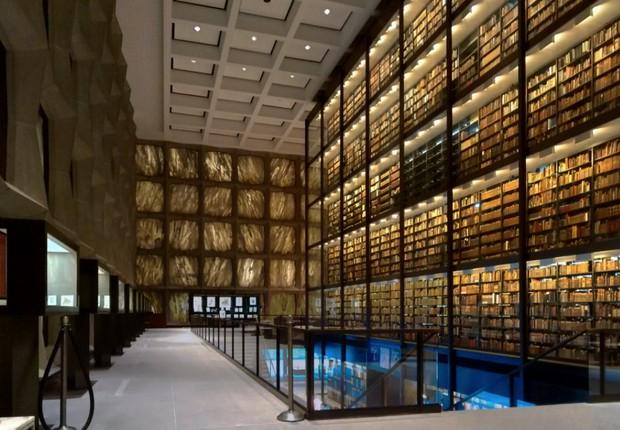 Biblioteca de Yale (Foto: Arquivo pessoal/Fernanda Lopes de Macedo Thees)