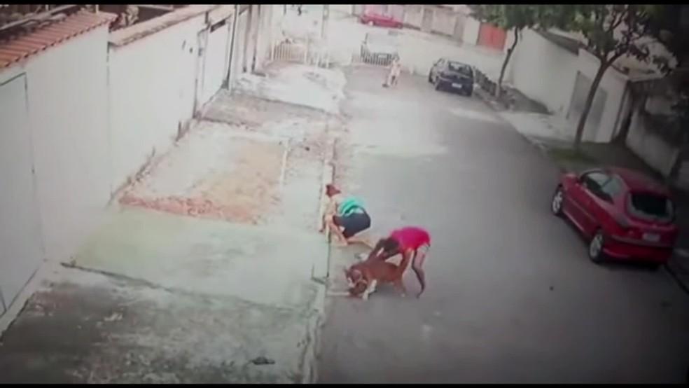 Patrick do Céu (de vermelho) tenta tirar o pitbull de cima de João Pedro — Foto: Reprodução/TV Globo