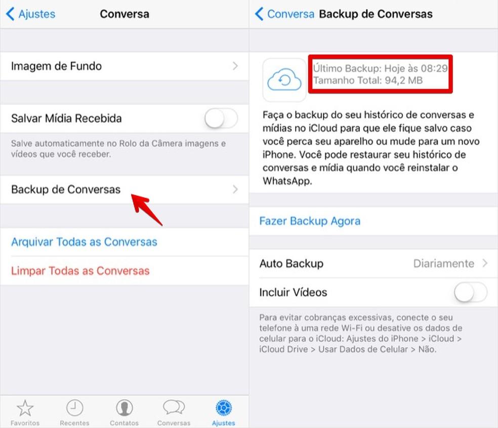 Configurações de backup do WhatsApp no iCloud — Foto: Reprodução/Helito Bijora