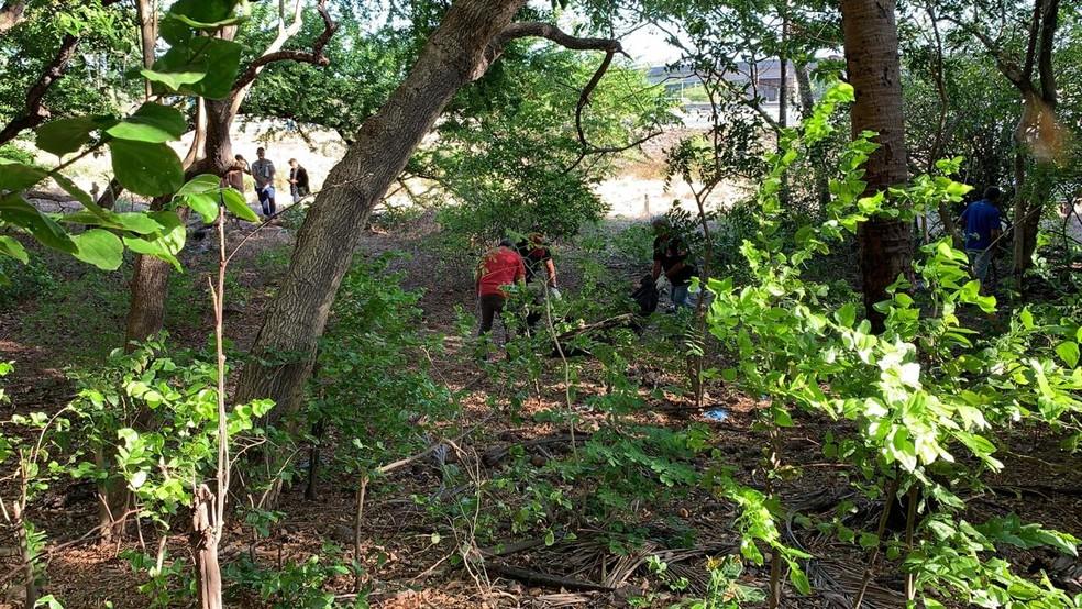 Mulher é encontrada morta em mata, em João Pessoa — Foto: Walter Paparazzo/G1