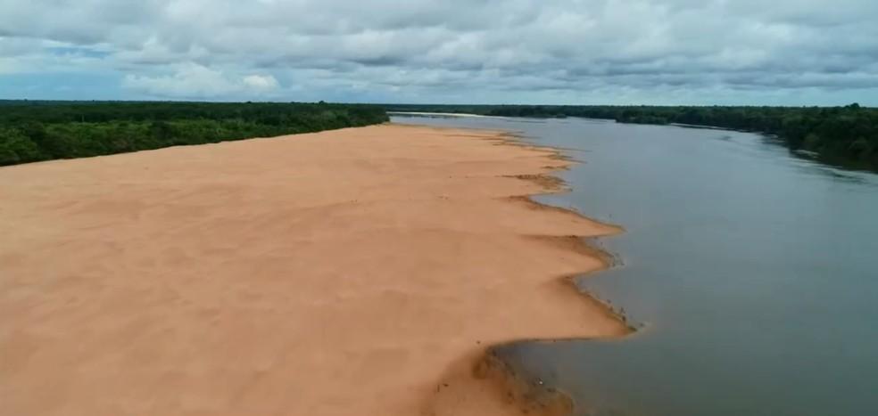 Projeto Quelônios do Guaporé em 2020: local é berçário de tartarugas  — Foto: Rede Amazônica/Reprodução