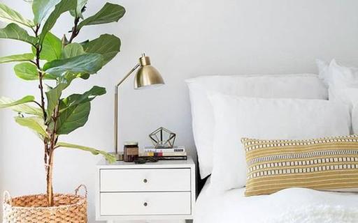 Seis ideias de como ter plantas no quarto