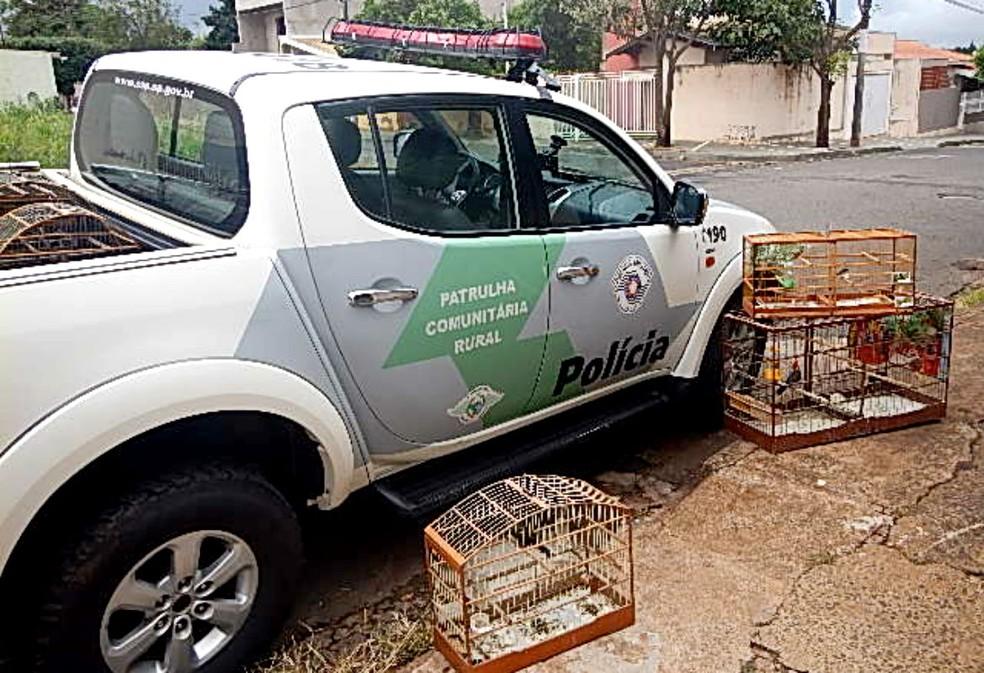 Policiais encontraram gaiolas com os acusados, que foram multados e autuados por crime ambiental (Foto: Divulgação / Polícia Ambiental de Marília)