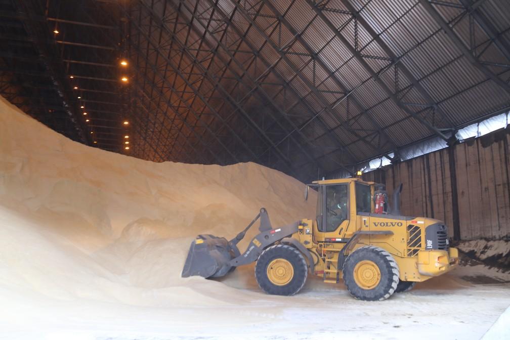 Armazém de açúcar no Terminal Integrador Portuário Luiz Antonio Mesquita (Tiplam) no Porto de Santos, SP — Foto: José Claudio Pimentel/G1