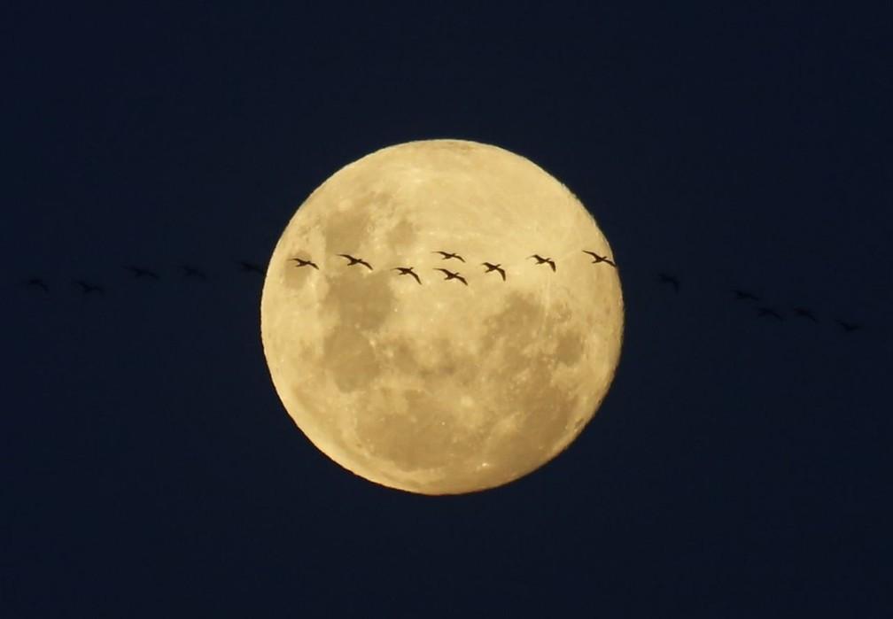 Os ciclos mensais e anuais da Lua mostraram notáveis similaridades com os padrões de humor em alguns pacientes — Foto: Marcos Serra Lima/G1