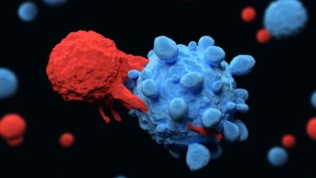 Pesquisadores encontraram maneiras de desativar proteínas que impediam células de defesa de atacar as células cancerígenas (Foto: Getty Images)