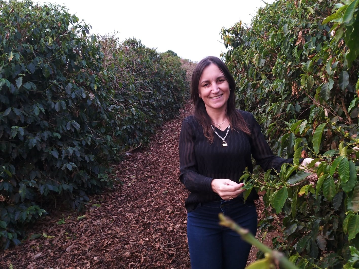 Polo de moda íntima, Juruaia alia confecções e lavouras de café: 'Um negócio ajuda o outro'