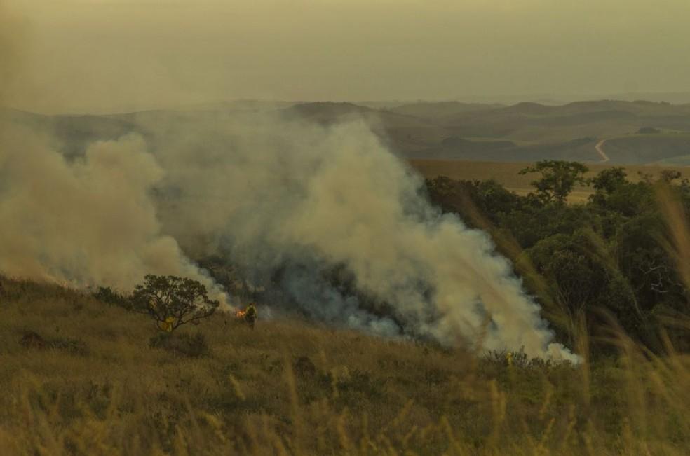Em agosto incêndio consumiu mais de 23 mil hectares de vegetação no parque — Foto: UFMG/Divulgação