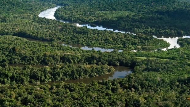 meio ambiente, sustentabilidade, preservação, amazônia (Foto: Tamara Sare/Fotos Públicas)
