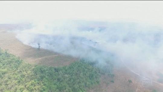 Desmatamento avança nas áreas protegidas da Amazônia, diz Inpe