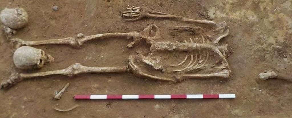 Esqueleto sem cabeça é encontrado em sítio arqueólogico (Foto: Divulgação)