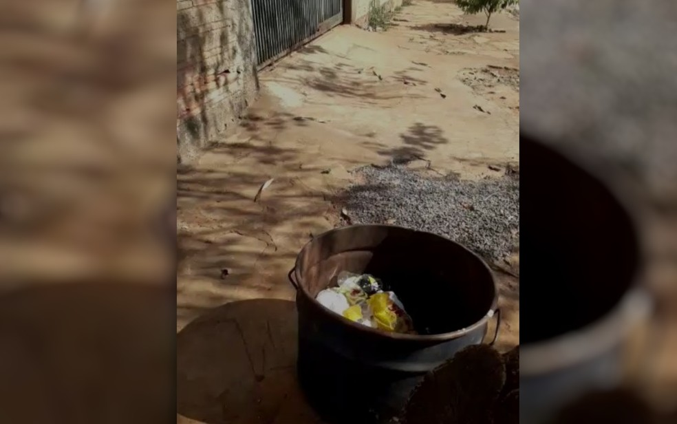 Dinheiro foi encontrado dentro de latão de lixo, em Santa Bárbara de Goiás  — Foto: Reprodução/TV Anhanguera