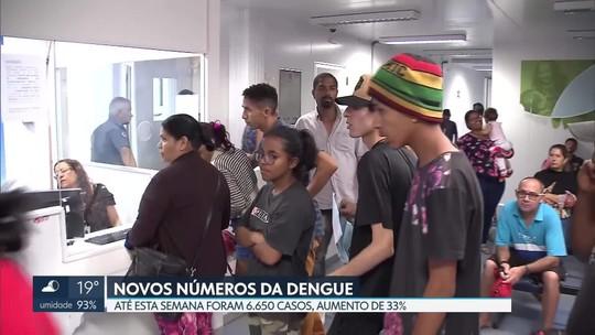 Secretaria de Saúde divulga novo boletim com números da dengue no DF