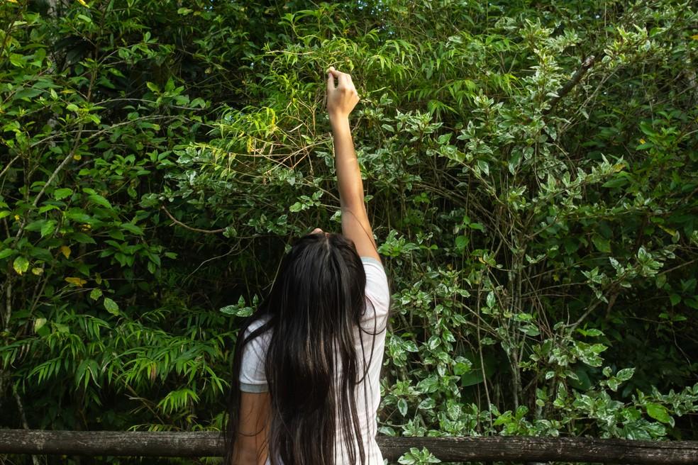 Jovem oferece frutas para atrair saguis no Parque Municipal do Córrego Grande, em Florianópolis — Foto: Celso Tavares/G1