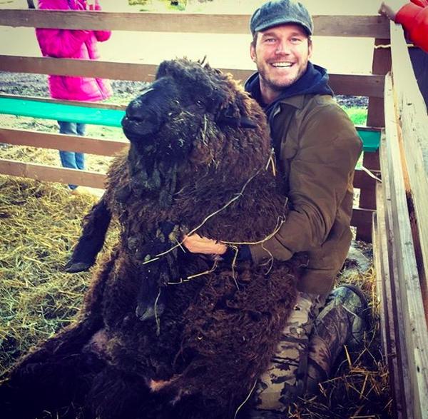 O ator Chris Pratt em sua fazenda (Foto: Instagram)