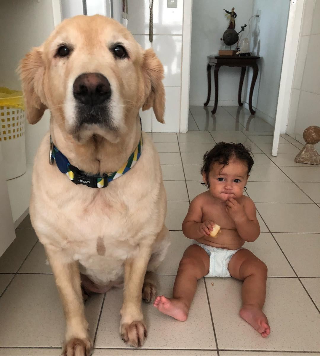 Madalena com companhia animal em novo clique no Instagram (Foto: Reprodução/Instagram)