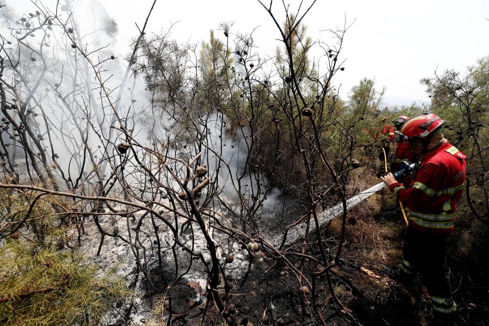Bombeiros lutam contra incêndio no centro de Portugal — Foto: Reuters