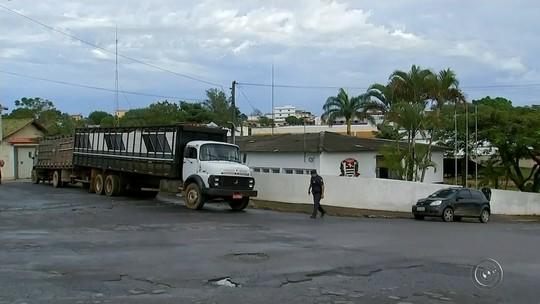 Suspeitos de participarem de quadrilha especializada em furto de gado são presos