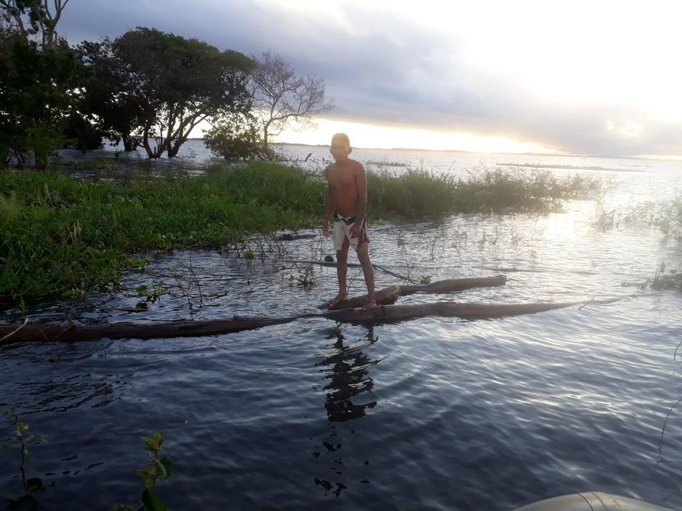Ítalo Lucas ficou sobre troncos de árvore até a chegada da equipe de Inspeção Naval (Foto: Capitania Fluvial de Santarém/Divulgação)
