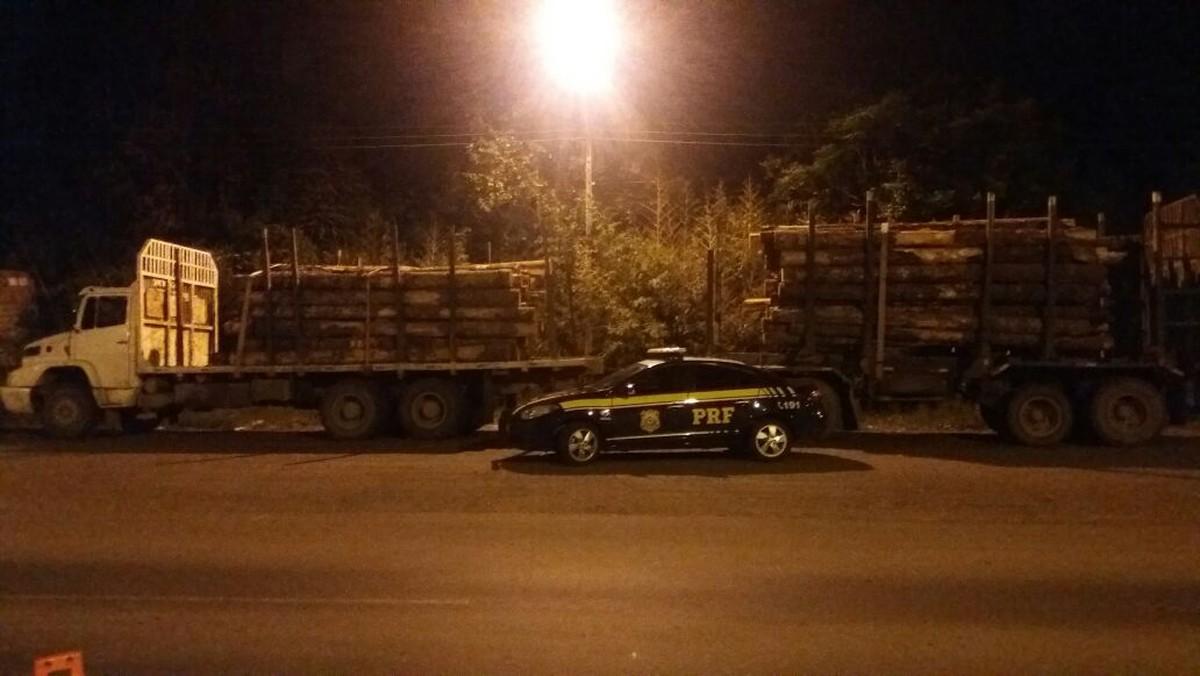 PRF apreende 30 toneladas de araucárias transportadas ilegalmente no sudeste do Paraná