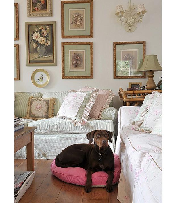 Seu animal costuma ficar dentro de casa? Separar uma almofada para ele ajuda. A cadela Café está bem à vontade no living. (Foto: Marcelo Magnani / Editora Globo)